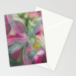Ghost Orchid Stationery Cards