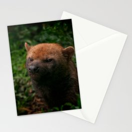 Bush Dog Stationery Cards