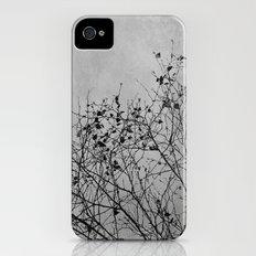 Tree Slim Case iPhone (4, 4s)