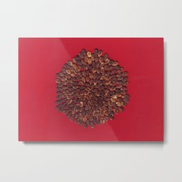 Watermelon seed Metal Print