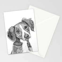 Perrito Stationery Cards