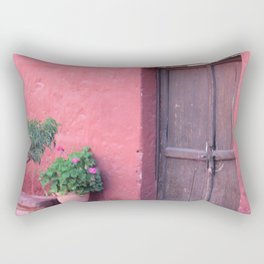if not a window..a door Rectangular Pillow