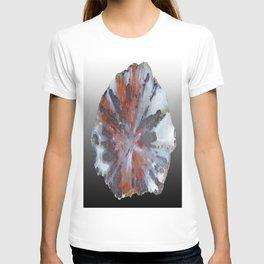 Cady Mountain Aragonite Pseudomorph (Sagenite) T-shirt