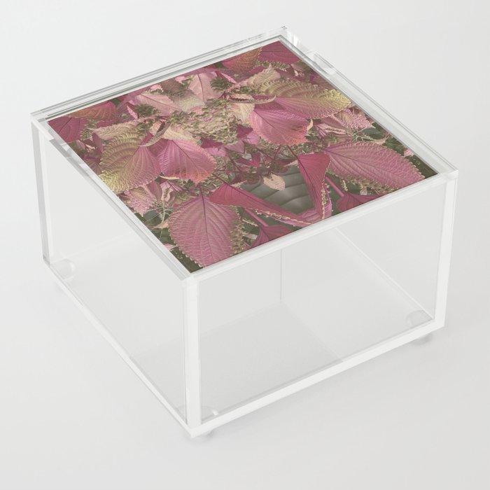 Red Shiso Warm Tones Pattern Acrylic Box