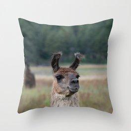 Llama Portrait - 1 Throw Pillow