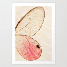 Pink Glasswing 1 Art Print