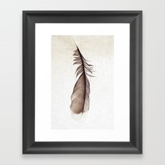 Feather Photograph: Ephemeral Framed Art Print