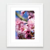 cherry blossoms Framed Art Prints featuring Cherry Blossoms by Joke Vermeer