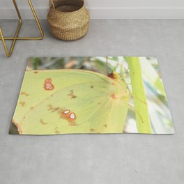 Watercolor Butterfly, Cloudless Sulphur Butterfly 01, Middletown, Maryland Rug