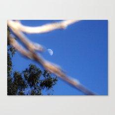 Moon on a Stick Canvas Print