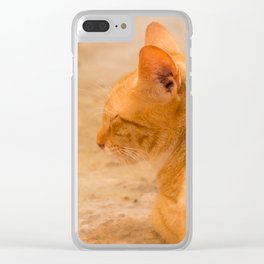 Orange Cat Is Resting On The Terrace  #decor #society6 #homedecor Clear iPhone Case