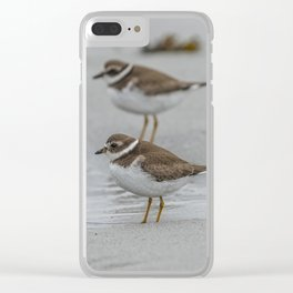 Pair of Plovers on the beach Clear iPhone Case