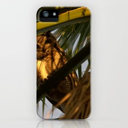 Whooo Are You? iPhone Case