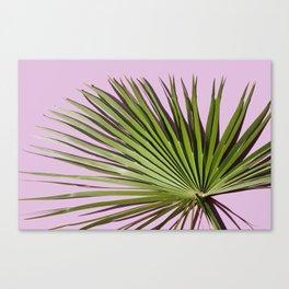 Palm on Lavender Canvas Print