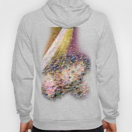 Insurrection Hoody