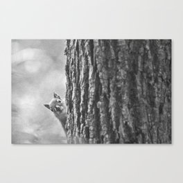 Sneak Peak - Spring Canvas Print