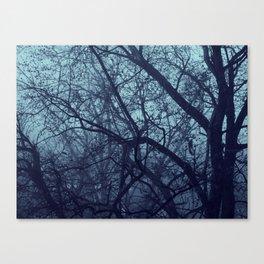Bleakness  Canvas Print