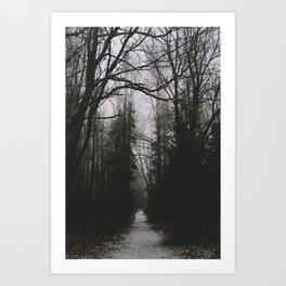 Spooky woods in Norway Art Print