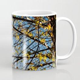 Birch Tree Photography Print Coffee Mug