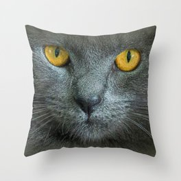 THE LOVE OF CATS Throw Pillow