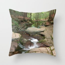 Worlds End Forest Stream Throw Pillow
