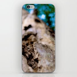 Dying trunk. iPhone Skin
