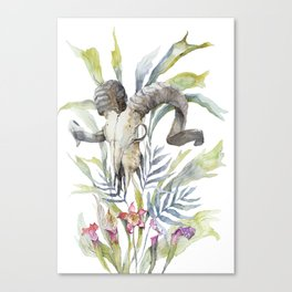 Short Day / Ram Animal Skull and Sarracenia Carnivorous Plant Platycerium Leaves Surreal Canvas Print