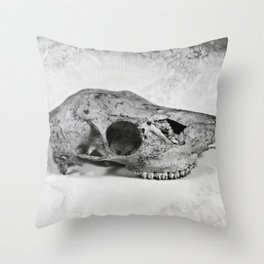 Whitetail Deer Skull (Doe) - 8x10 Tintype Photo Throw Pillow