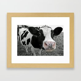Something kinda moo Framed Art Print
