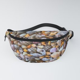 Seashell Collection Fanny Pack