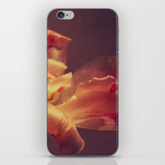 luce iPhone & iPod Skin