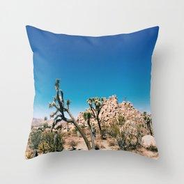 Joshua II Throw Pillow