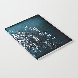 Yesterday's Notebook