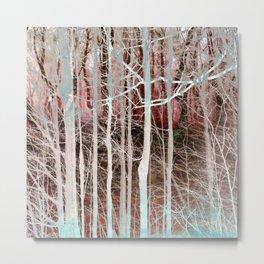 The Secret Lives of Trees XI Metal Print