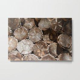 Woodlock (Lake Tahoe, California) Metal Print
