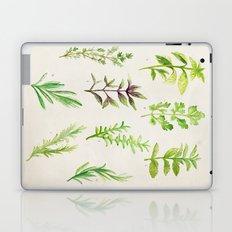 Watercolor Herbs Laptop & iPad Skin