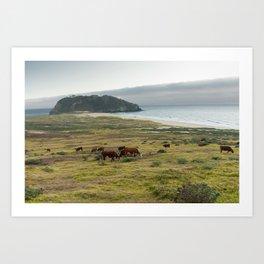 Sea Cattle Art Print