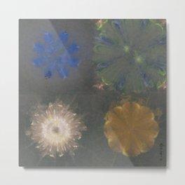 Pajama Constitution Flower  ID:16165-101448-73620 Metal Print