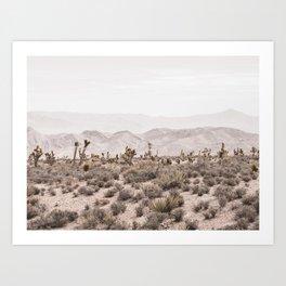 Sierra Nevada Mojave // Desert Landscape Blush Cactus Mountain Range Las Vegas Photography Art Print