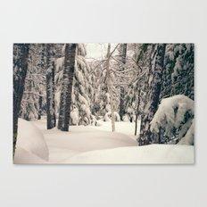 Winter Woods 2 Canvas Print
