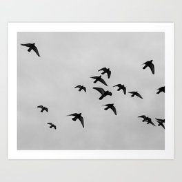 birds flying away Art Print