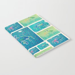 Crabs Notebook