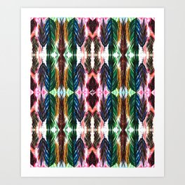 Feather in Colour Art Print