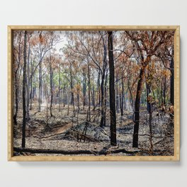 Fire damaged forest Serving Tray