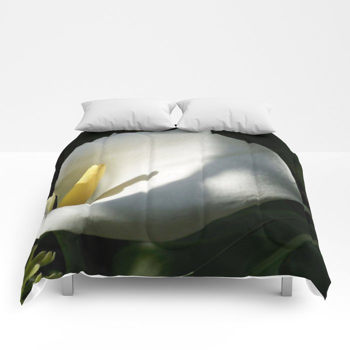 White Calla Lilies Over Black Background In Soft Focus Comforters