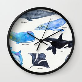 Atlantic whales, narwhal, dolphin and orca Wall Clock