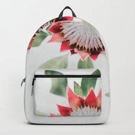 King Protea II Backpack