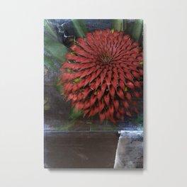 Flora Endemica #004 Metal Print