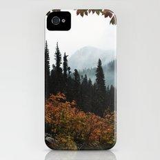 Fall Framed Trail iPhone (4, 4s) Slim Case