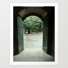 Open Double Door Art Print